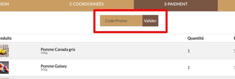 code promo Alancienne